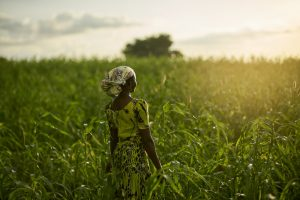 Land Rights: Securing quality and dignity of life